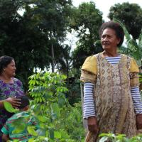 Increasing women's resilience in Fiji through participatory governance